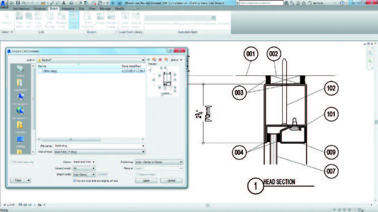 Import Dwg Files into Revit LT